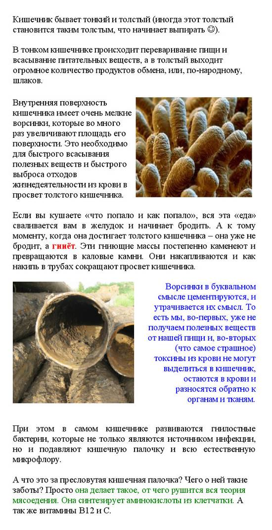 очищение кишечника от паразитов аюрведа