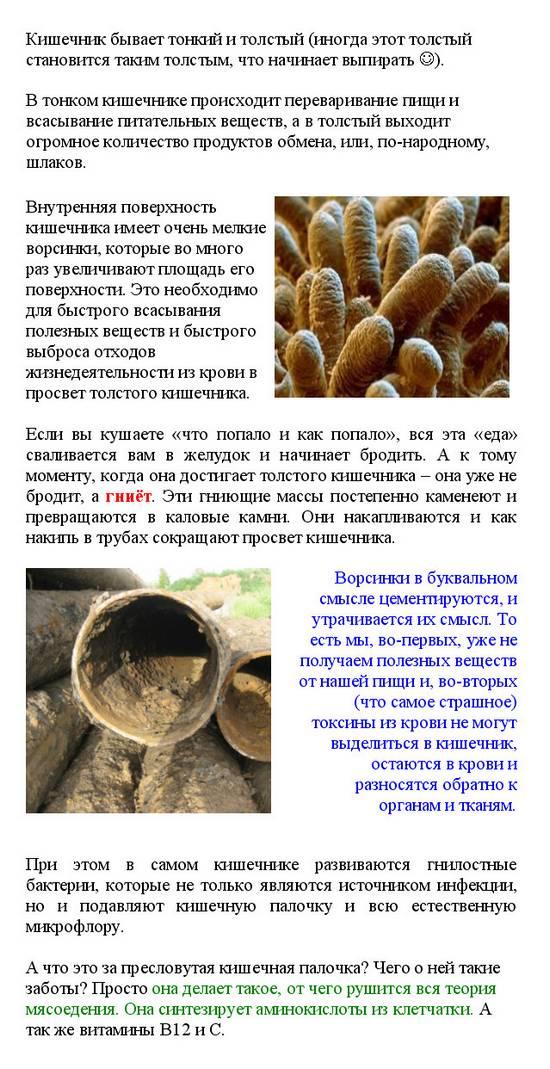 ochichenie_kishechnika_очищение кишечника_2